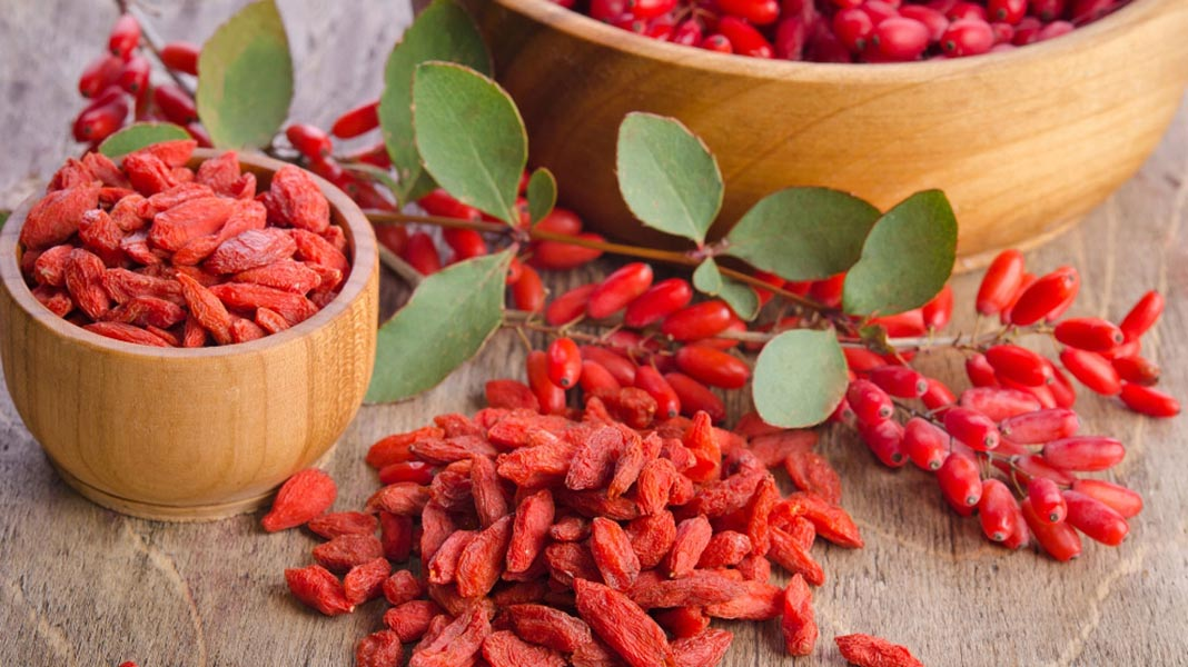 Silvermoon Chocolates- Organic and ethically sourced Goji Berries