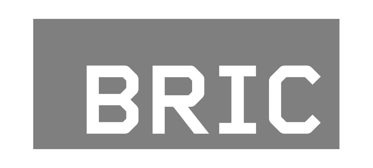 BRIC_Logo.png