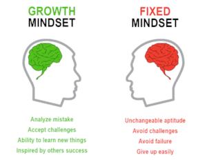 fixed mindset.png