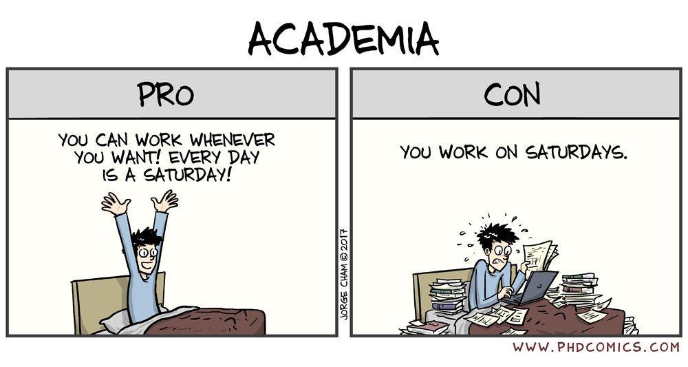 Academia.jpg