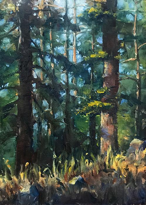 El Dorado National Forest
