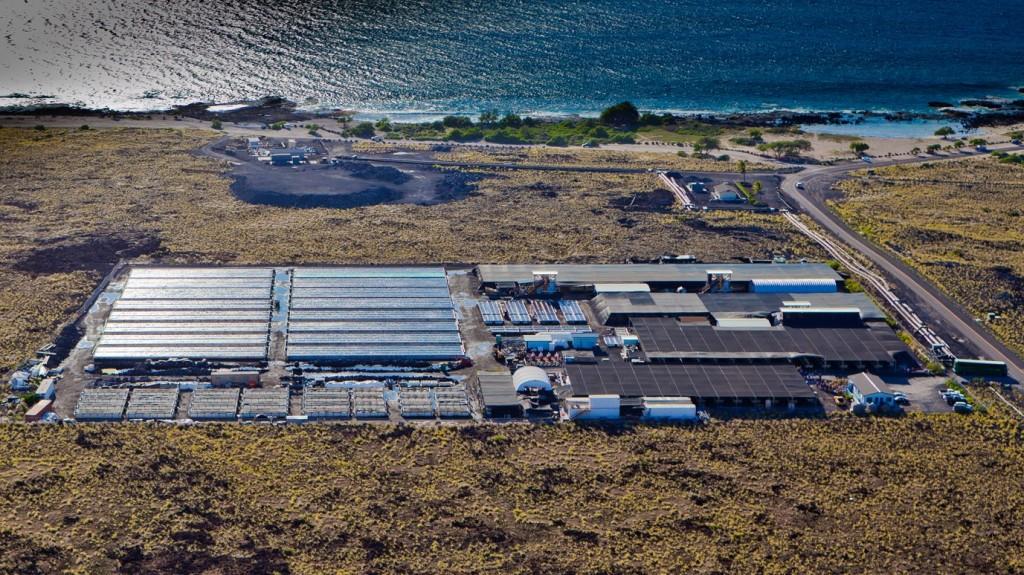 Kona-Abalone-Factory2-1024x575.jpg