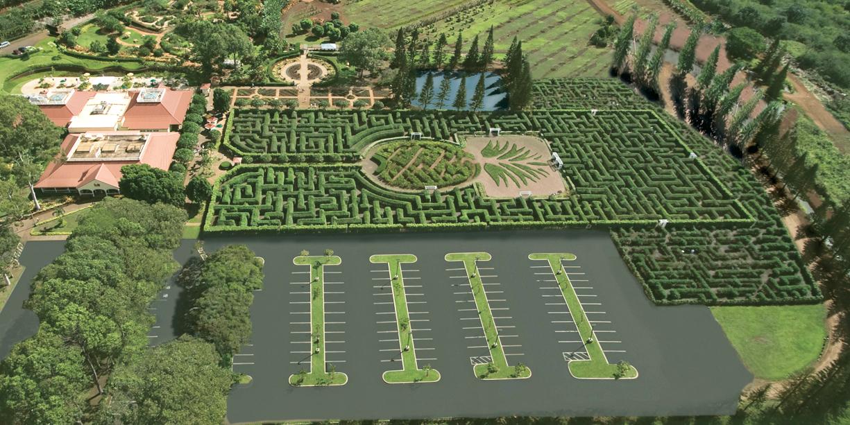 Dole_Expanded Maze.jpg