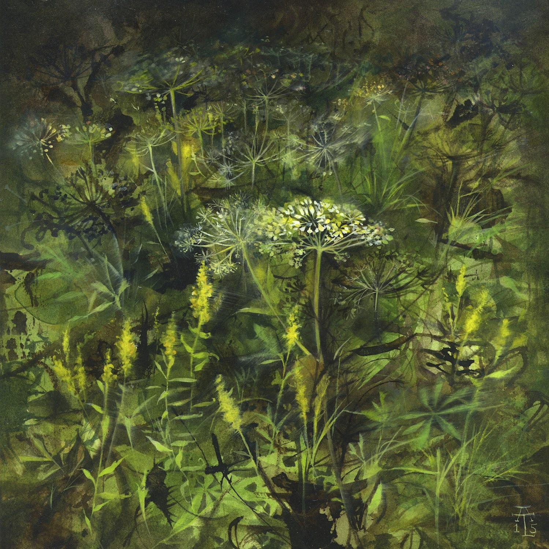 Paintings: Field Studies