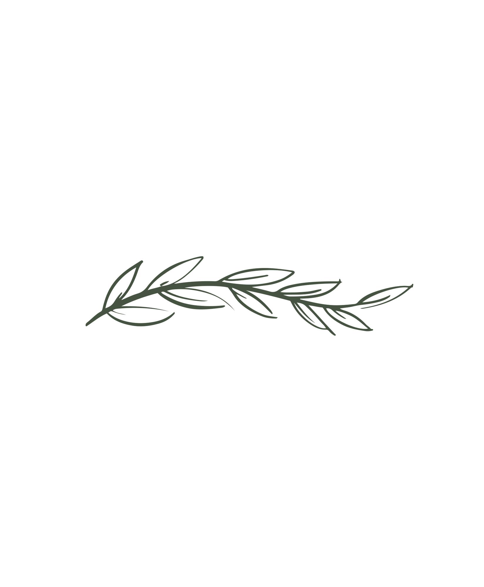 Hen and Chicks // Logo Design // Bexley Design Co