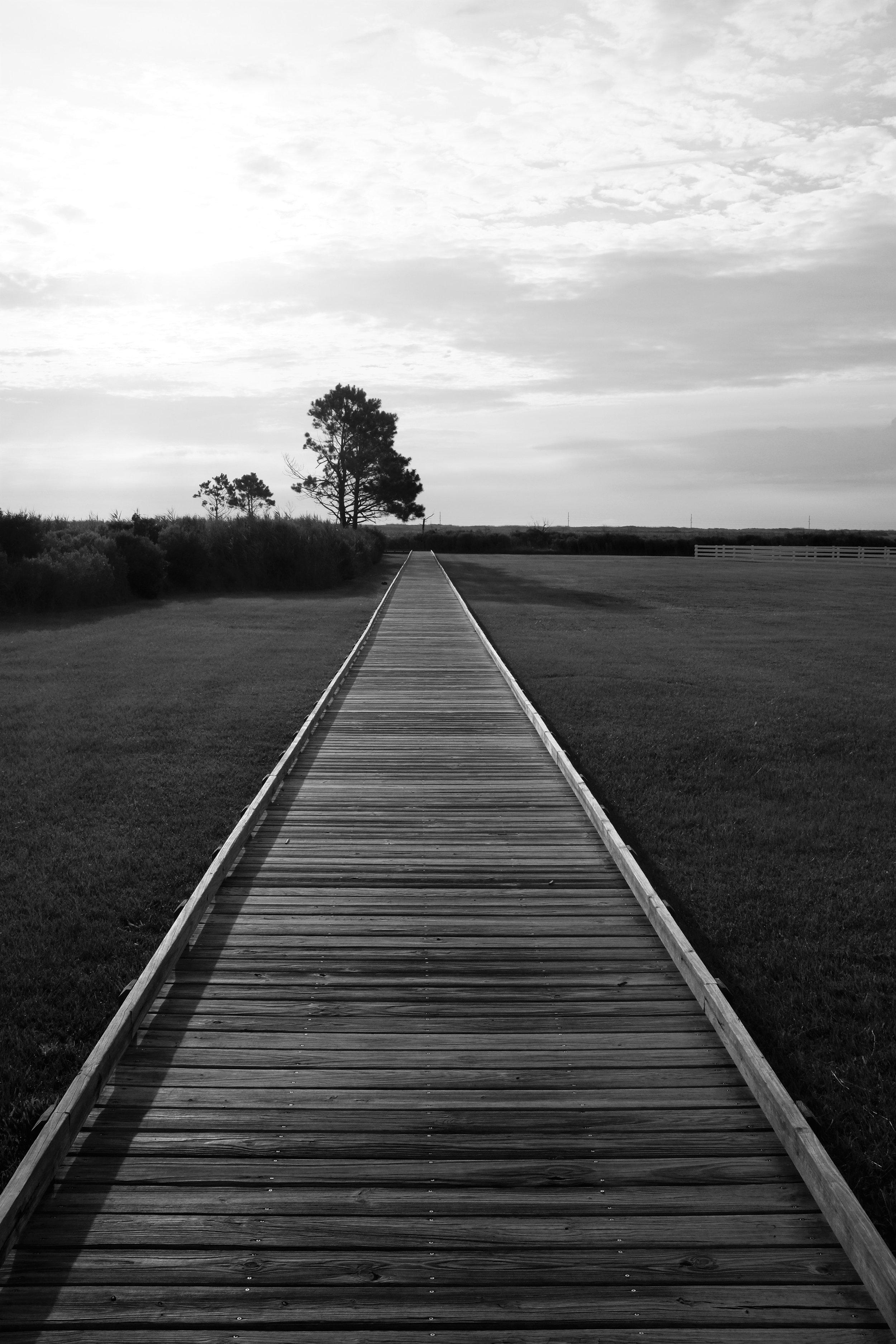 Bodie Island, NC 2016