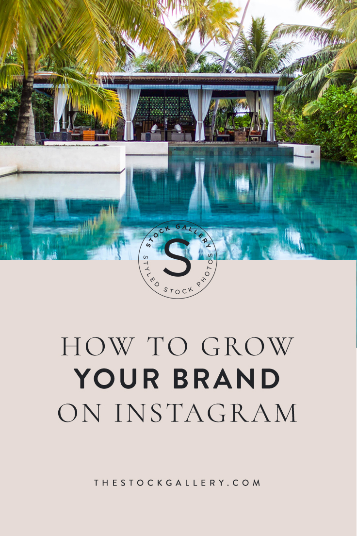 how-to-grow-your-brand-on-instagram.jpg
