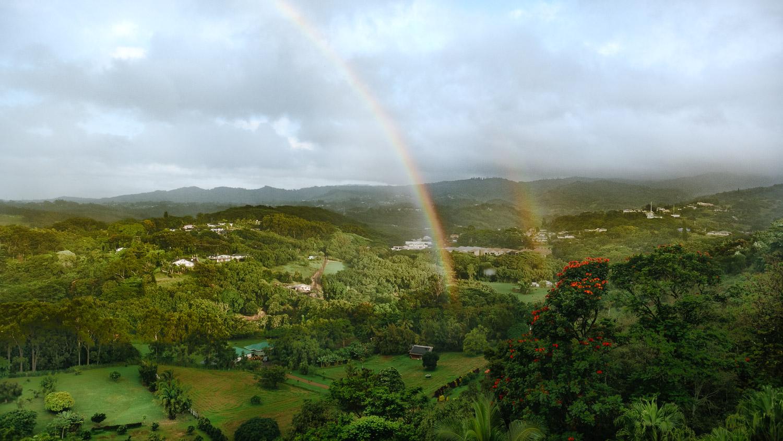 view from Marjorie's Kaua'i Inn B&B
