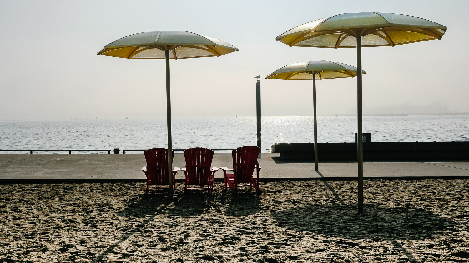 A beach at the Toronto Harbourfront