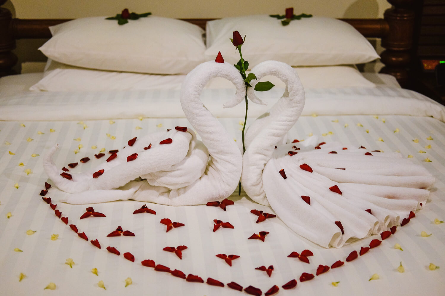 Nothing says romance like swan towels. At the Privilege Floor by Borei Angkor.