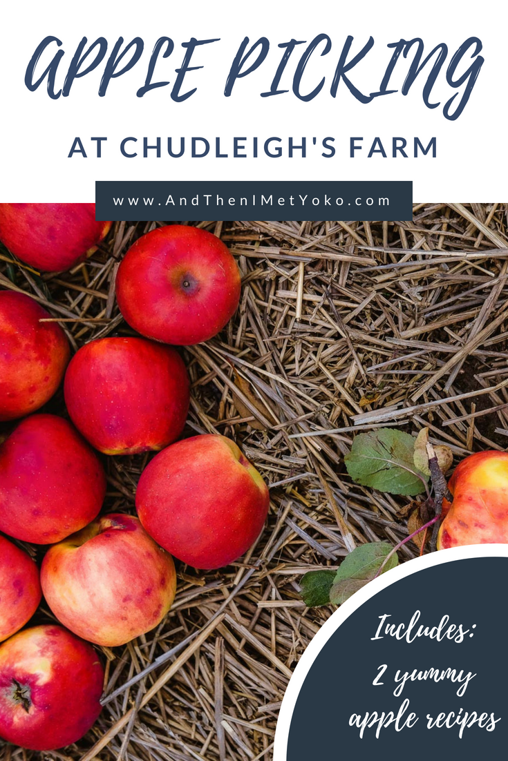Spend an autumn day picking apples at Chudleigh's Apple Farm near Toronto. #applepicking #toronto #chudleighs #travelguide #photoblog