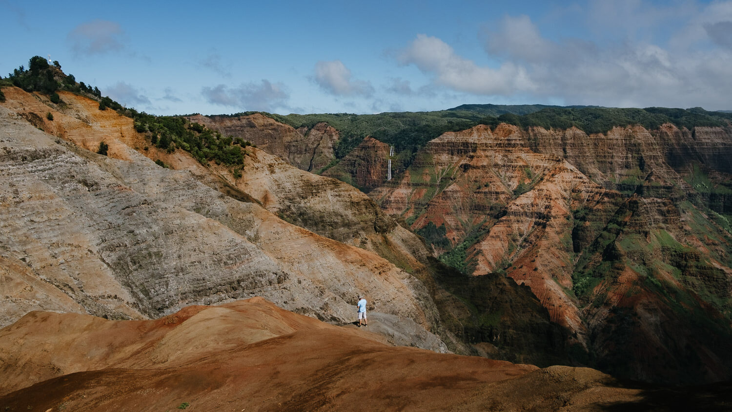 """Waimea Canyon from the first lookout point. Travel photography and guide by © Natasha Lequepeys for """"And Then I Met Yoko"""". #kauai #hawaii #travelguide #travelphotoblog #photoblog #travelblog #travelphotography #landscapephotography #travelitinerary #fujifilm #hiking #beach #beachvacation #getoutdoors #explore #wanderlust #aerialphotography #helicopter #travel #usa"""