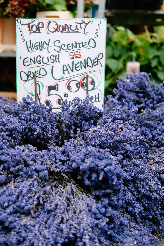 Lavender for sale at the Flower Market