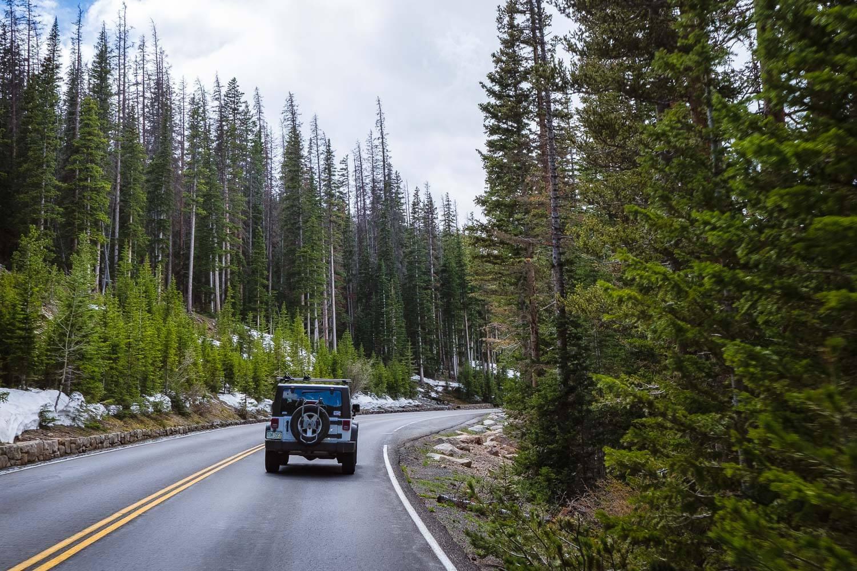 "Drive the trail ridge road, Rocky Mountain National Park. Travel photography and guide by © Natasha Lequepeys for ""And Then I Met Yoko"". #colorado #usa #denver #rmnp #geology #rockymountainnationalpark #travelguide #photoblog #travelblog #travelphotography #landscapephotography #coloradoitinerary #fujifilm #hiking #nature #roadtrip #getoutdoors #deer #nationalpark #trailridgeroad"