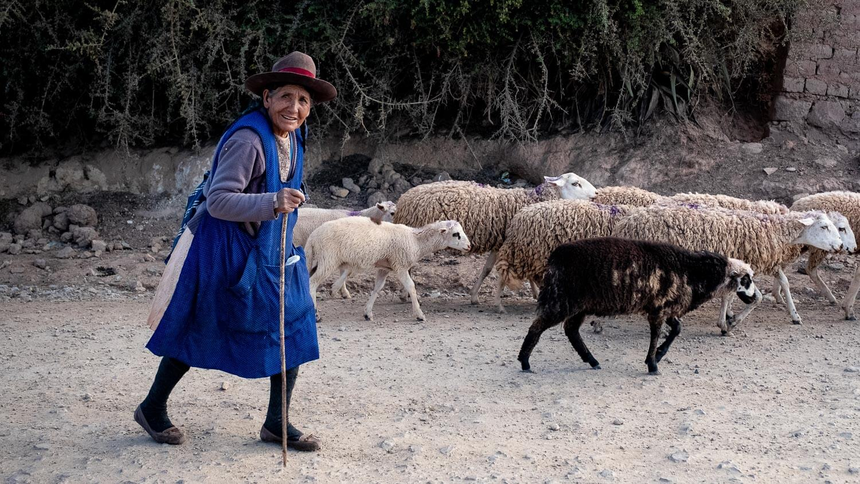 "Woman herding sheep, The Sacred Valley, Peru. Travel photography and guide by © Natasha Lequepeys for ""And Then I Met Yoko"". #photoblog #fujifilm #ValleSagrado"