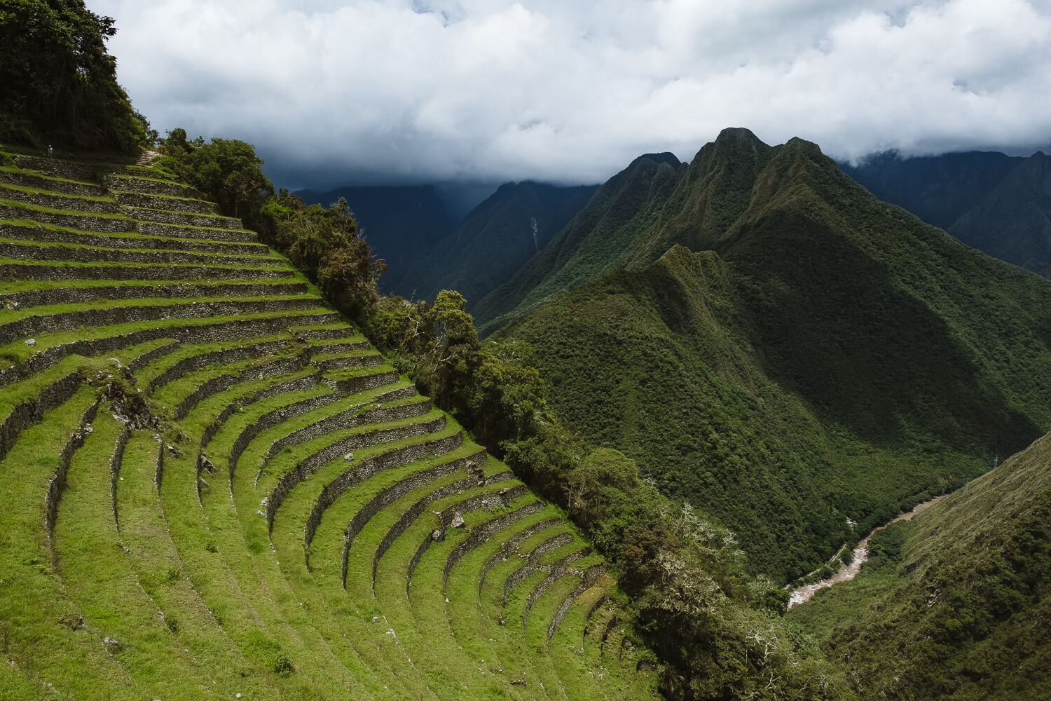 "Terraces of Winay Wayna. Travel photography and guide by © Natasha Lequepeys for ""And Then I Met Yoko"". #machupicchu #shortincatrail #2dayincatrail #incatrail #aguascalientes #sacredvalley #peru #travelguide #photoblog #travelblog #travelphotography #landscapephotography #travelitinerary #machupicchuitinerary #fujifilm #southamerica #visitperu #dayhike #ancientruins #hiking"