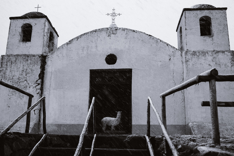 "Alpaca in a church during a blizzard. Travel photography and guide by © Natasha Lequepeys for ""And Then I Met Yoko"". #peru #sacredvalley #cusco #laketiticaca #belmondandeanexplorer #perurail #perutrain #luxurytravel #sleepertrain #photoblog #travelblog #travelphotography #fujifilm #andes #travel #travelperu #cuscotolaketiticaca #spiritofthelake #belmond #puno #southamerica"