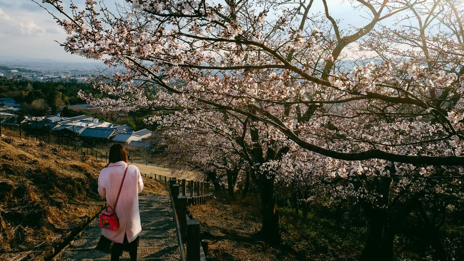 "A girl walks down Mount Wakakusa during cherry blossom season. © Natasha Lequepeys for ""And Then I Met Yoko"". #japan #japanitinerary #travelblog #fujifilm #asia"
