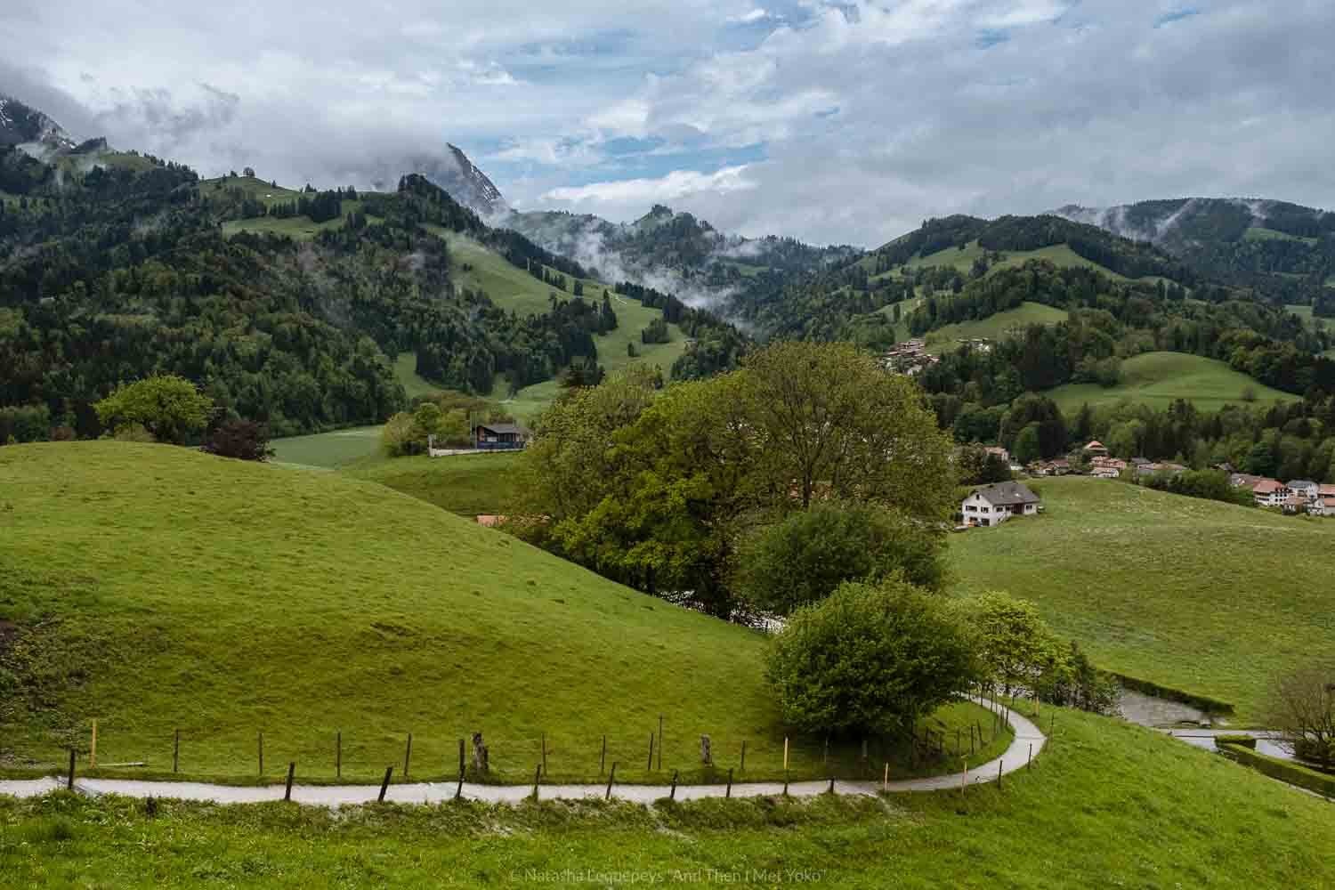 "The path to the town of Gruyères, Switzerland. Travel photography and guide by © Natasha Lequepeys for ""And Then I Met Yoko"". #gruyere #switzerland #travelguide #travelphotography"