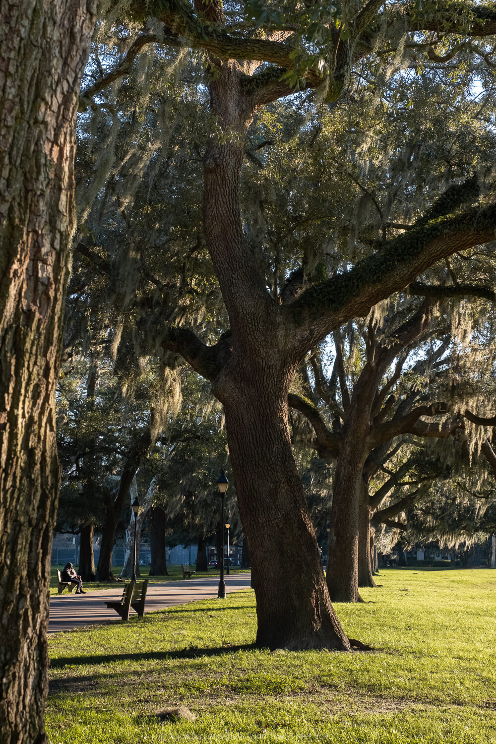 """Sunset in Forsyth Park, Savannah, Georgia. Travel photography and guide by © Natasha Lequepeys for """"And Then I Met Yoko"""". #savannah #usa #travelguide #travelblog"""