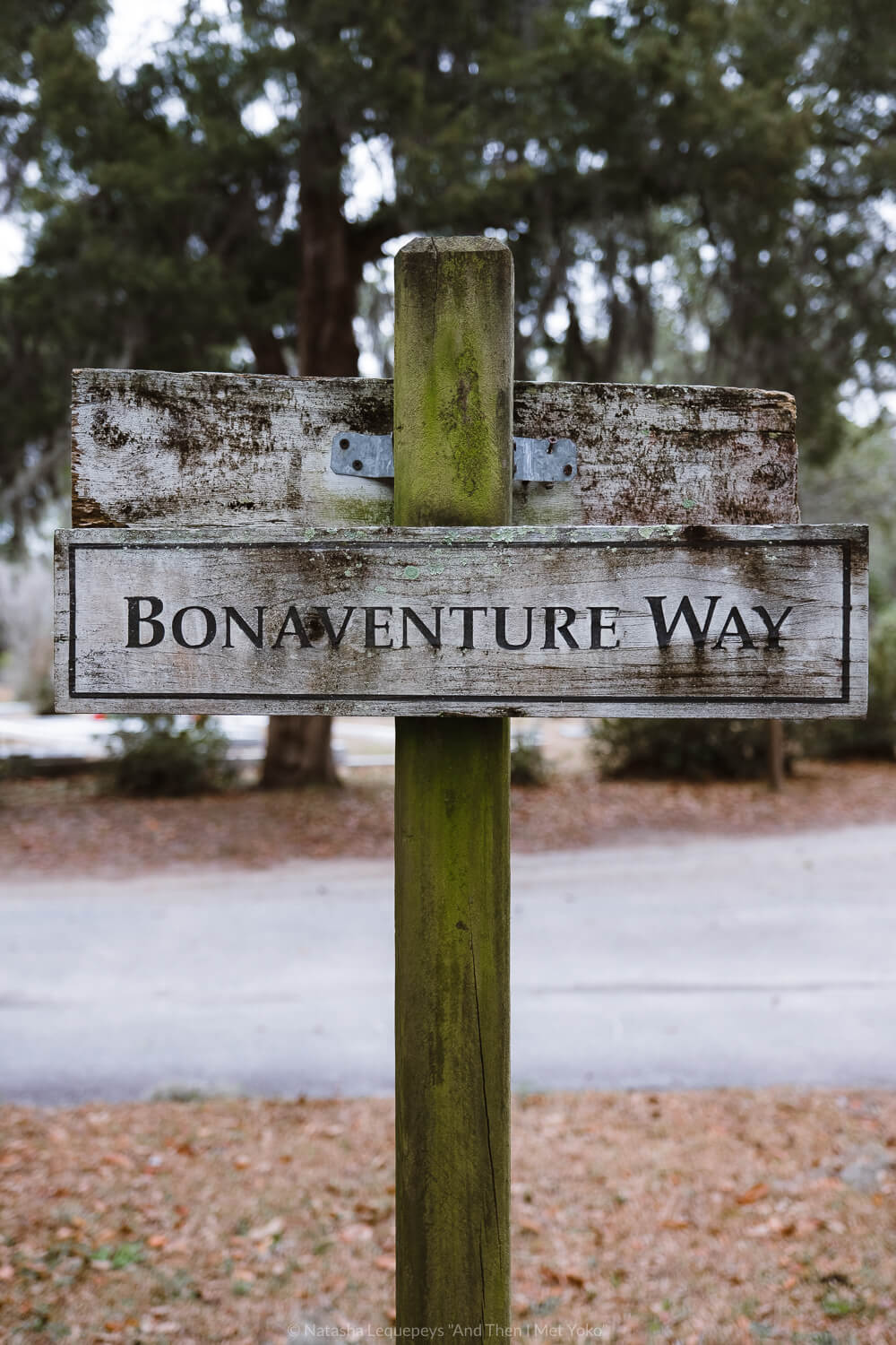 """Old sign for Bonaventure Way at Bonaventure Cemetery in Savannah, Georgia. Travel photography and guide by © Natasha Lequepeys for """"And Then I Met Yoko"""". #bonaventurecemetery #savannah #travelguide #travelblog #travelphotography #fujifilm"""