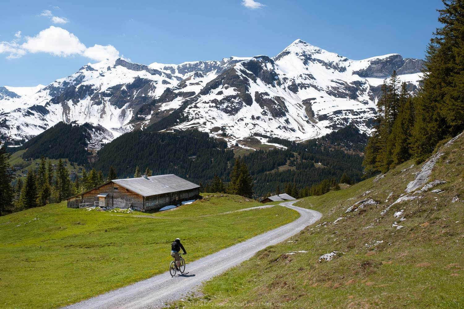 "A cyclist on the trail to Wengen from Kleine Scheidegg. Travel photography and guide by © Natasha Lequepeys for ""And Then I Met Yoko"". #wengen #jungfrau #travelphotography #switzerland"