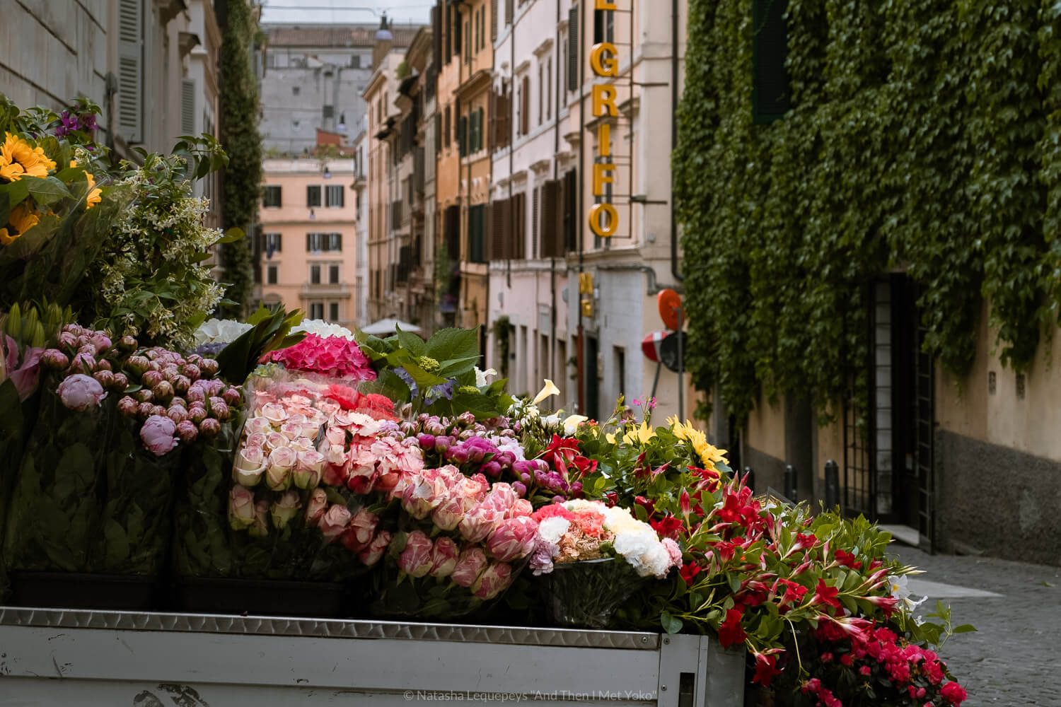 """Flowers in Monti in Rome, Italy. Travel photography and guide by © Natasha Lequepeys for """"And Then I Met Yoko"""". #rome #italy #travelblog #travelphotography"""