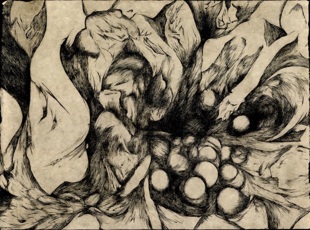 Seedpod , Rachel Singel