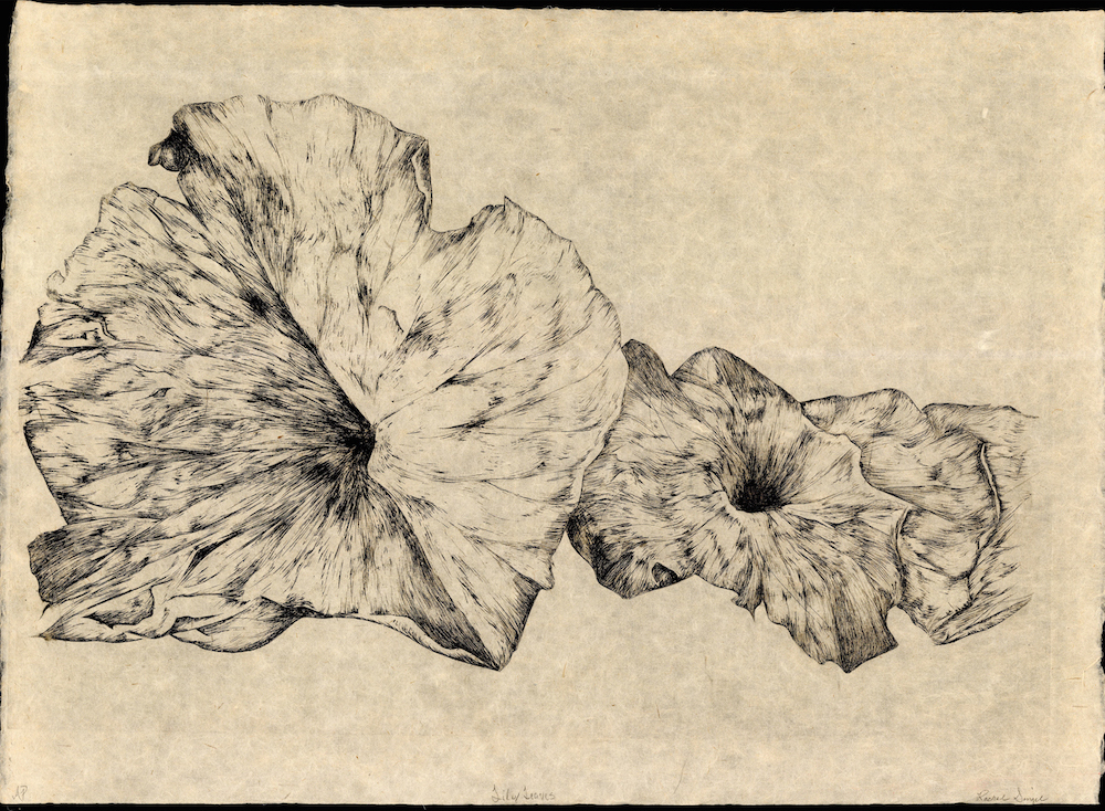 Lily Leaves , Rachel Singel