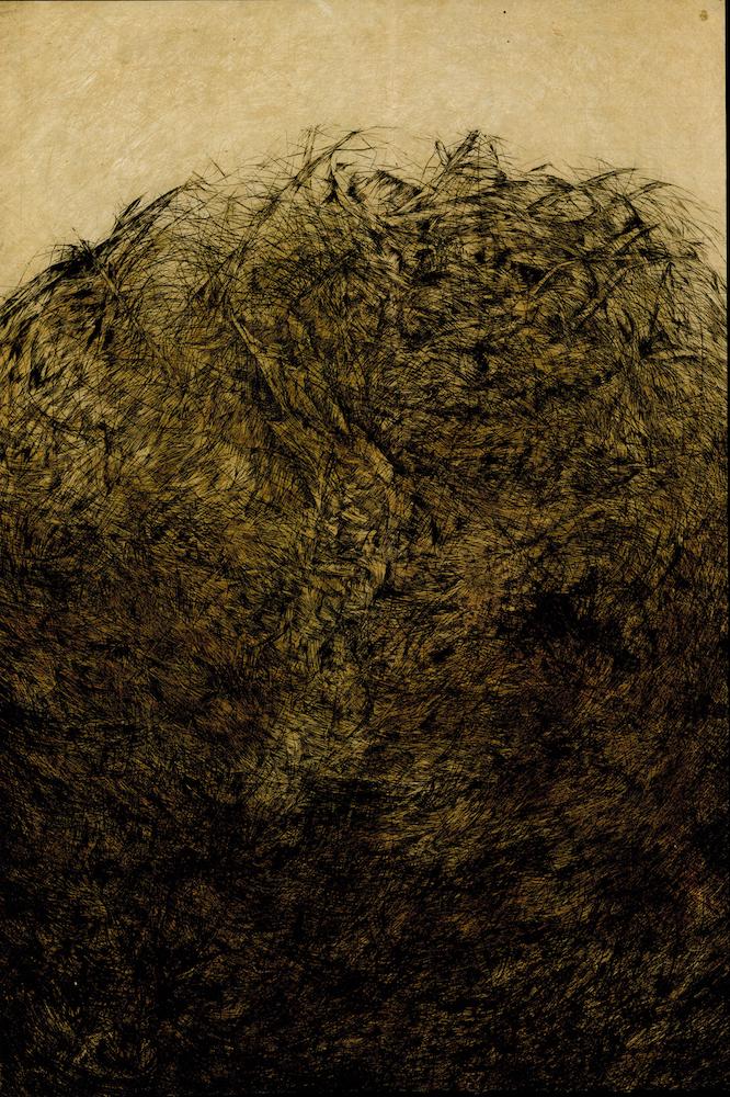 Nest , Rachel Singel