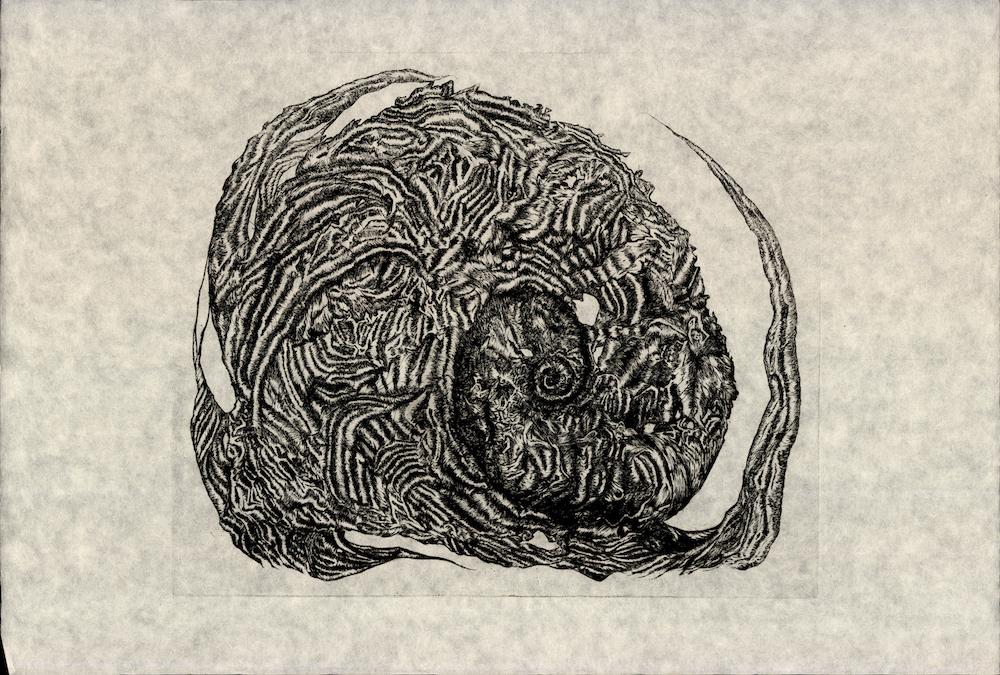 Unfurling Fern , Rachel Singel