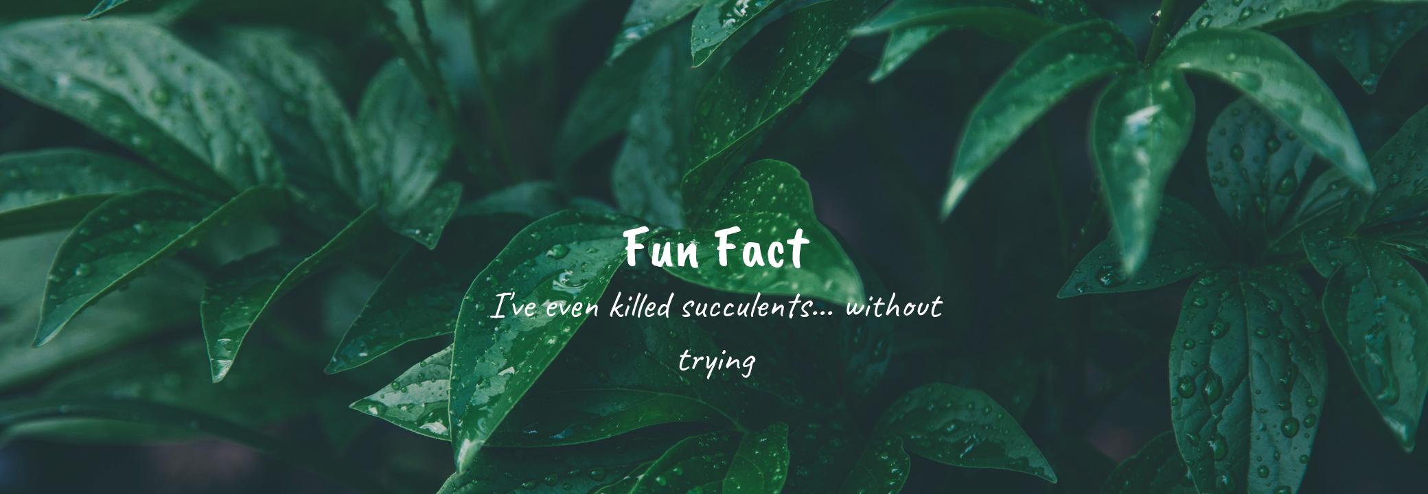 Fun Fact (2).png