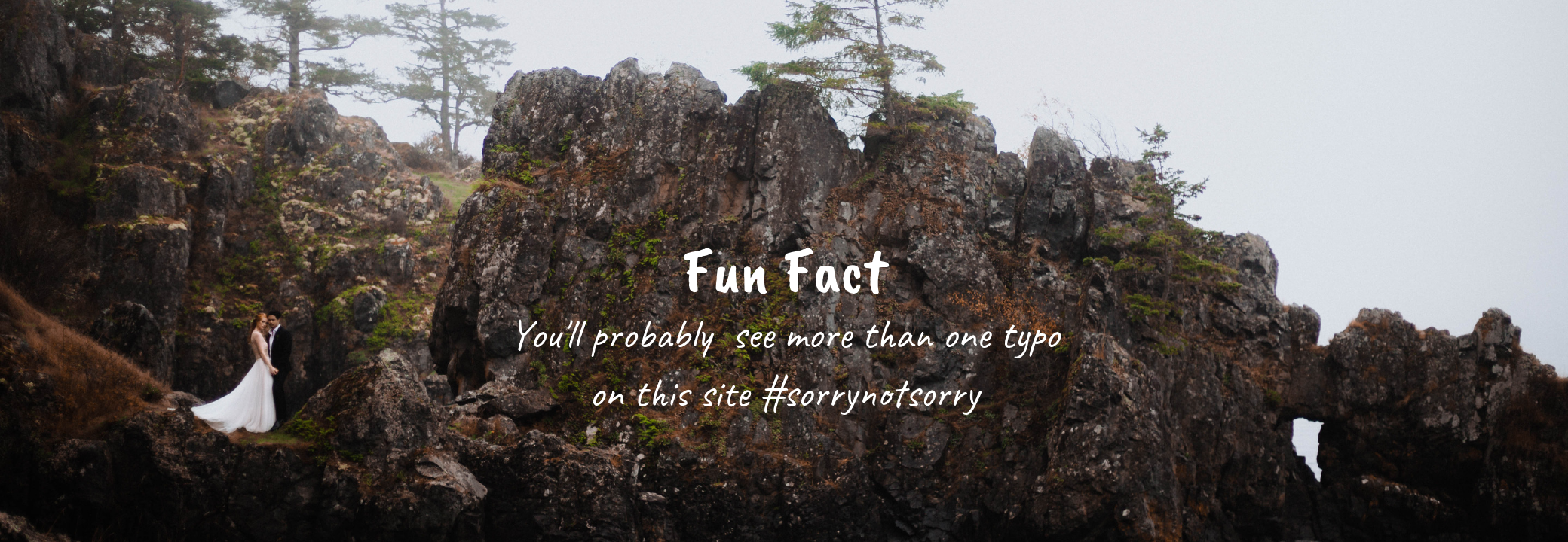 Fun Fact (5).png