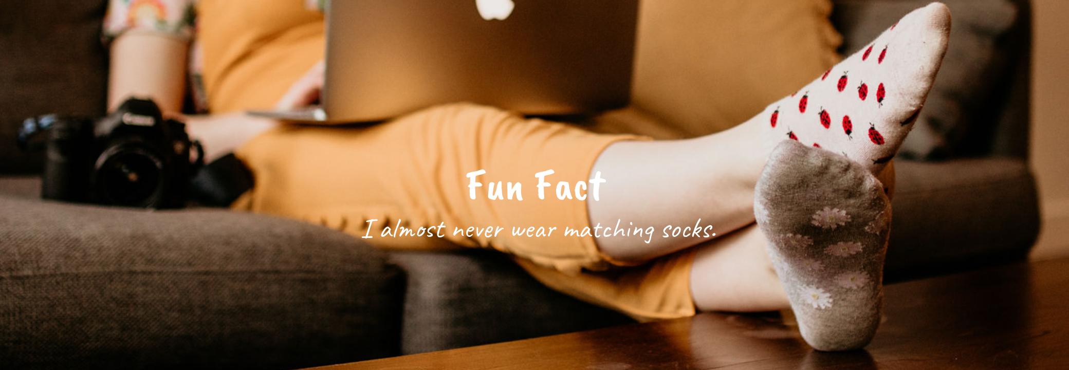 Fun Fact (6).png