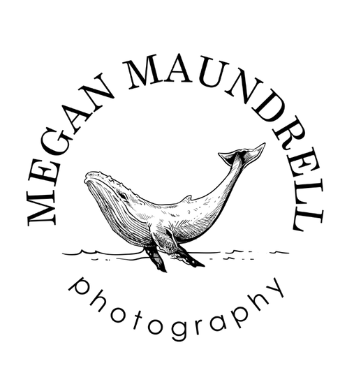 Victoria Photographer, Megan Maundrell photography Logo - Whale PNG