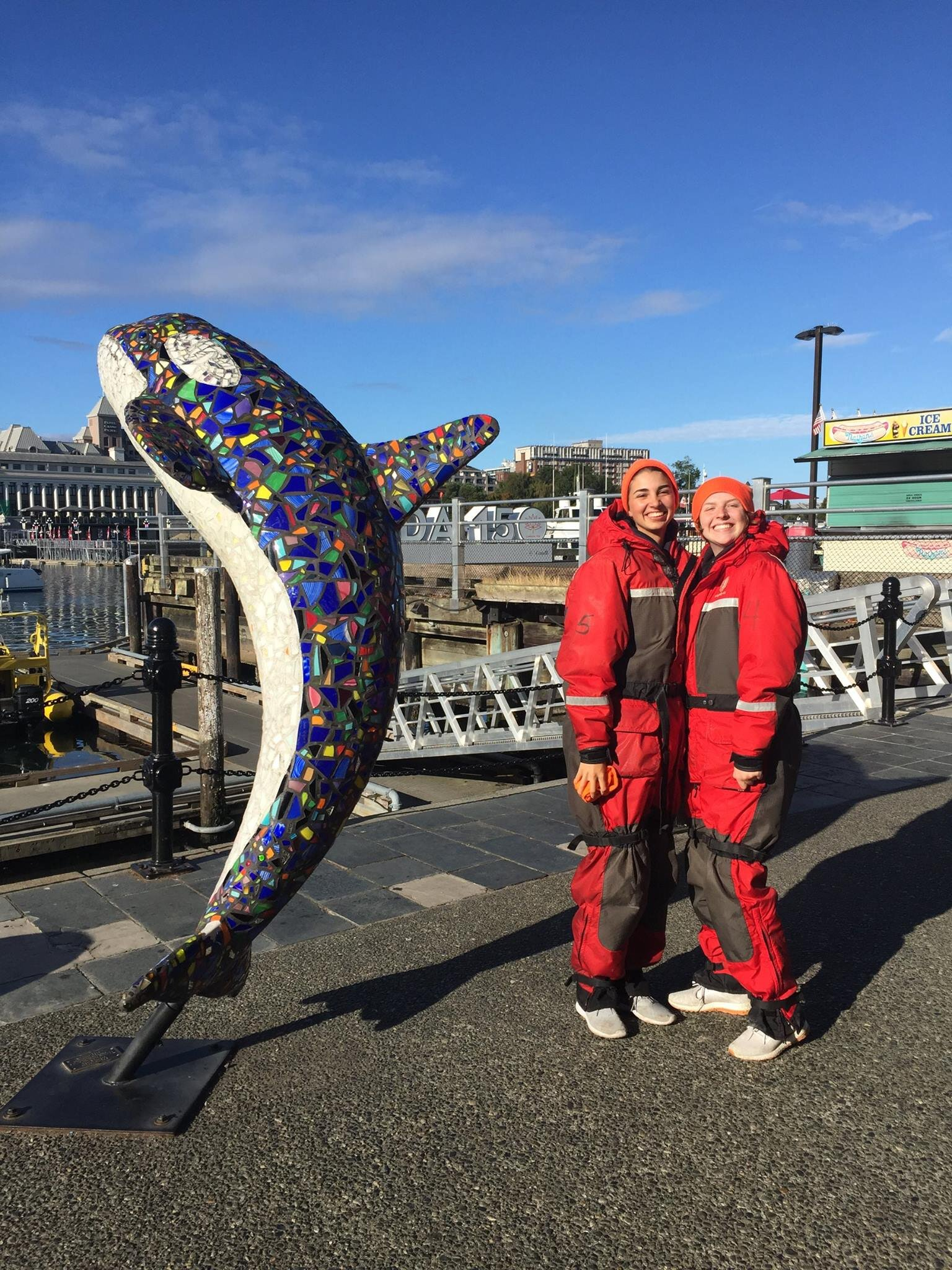 Whale watching in victoria BC