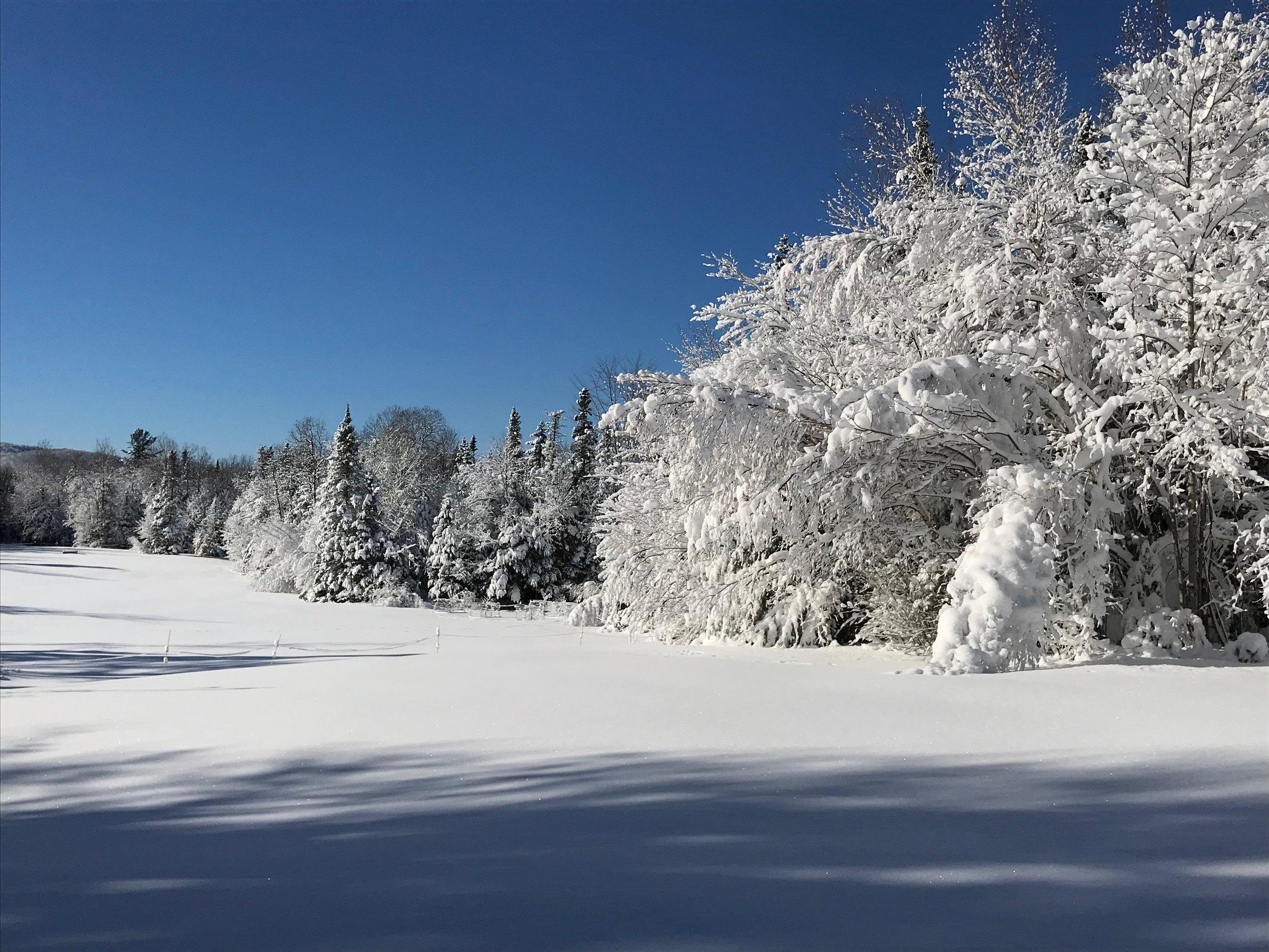 Typical winter scene in Vermont.  Photo: David Hof