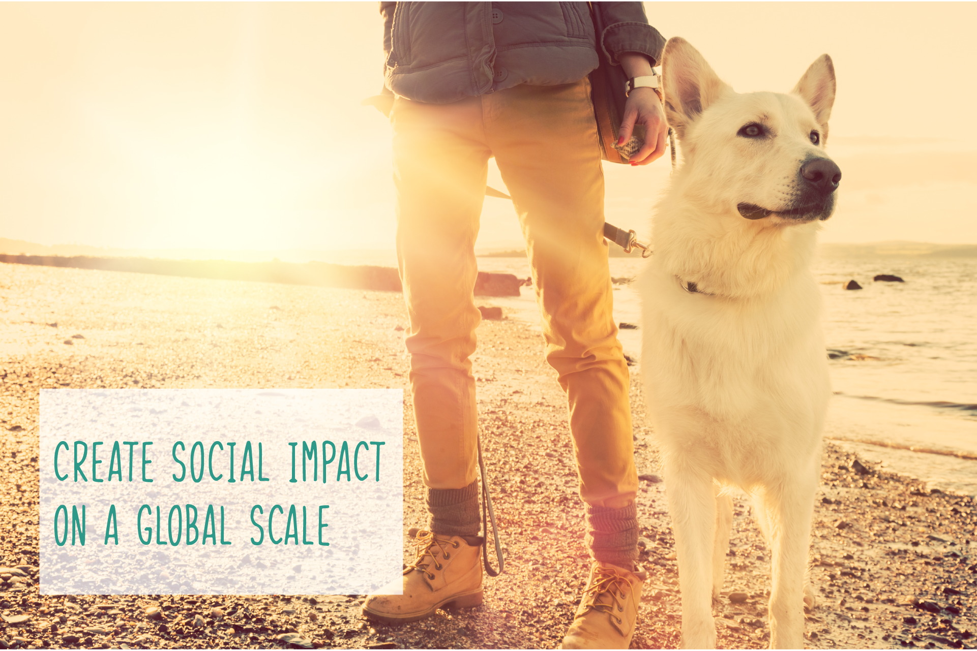 Create-Social-Impact-Home-Page-Banner-01.png