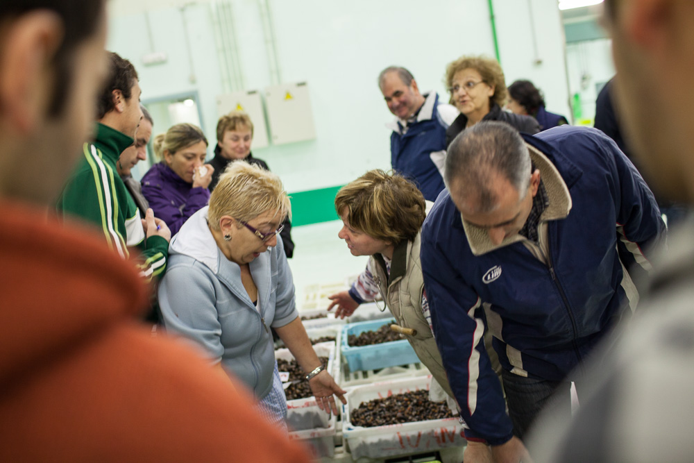 December 09, 2011 - La Coruña. Buyers discuss the price of a box of percebes at the fish market of La Coruña. Most of the fish and sea food catch in the region is sold here. © Thomas Cristofoletti 2011