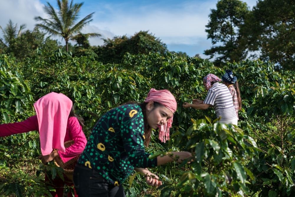 USAID Cambodia - Nanda