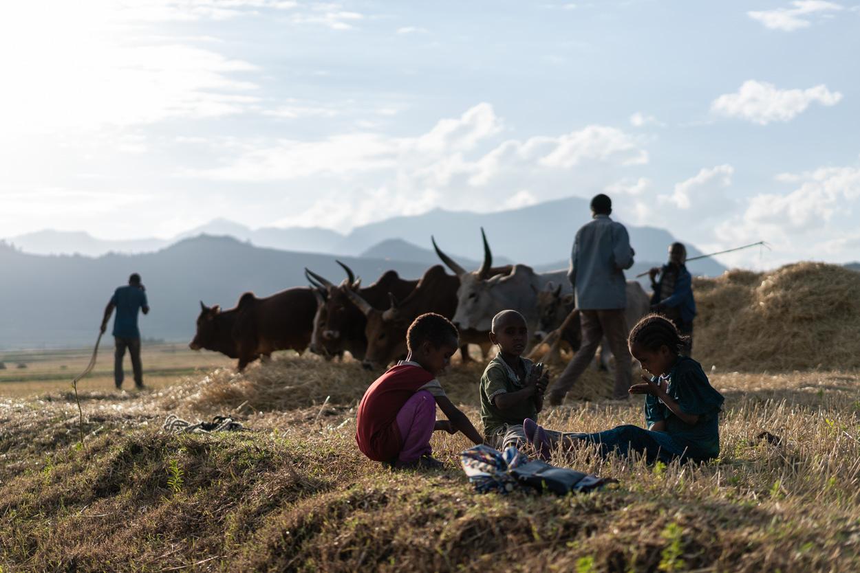 USAID Ethiopia - Aberu