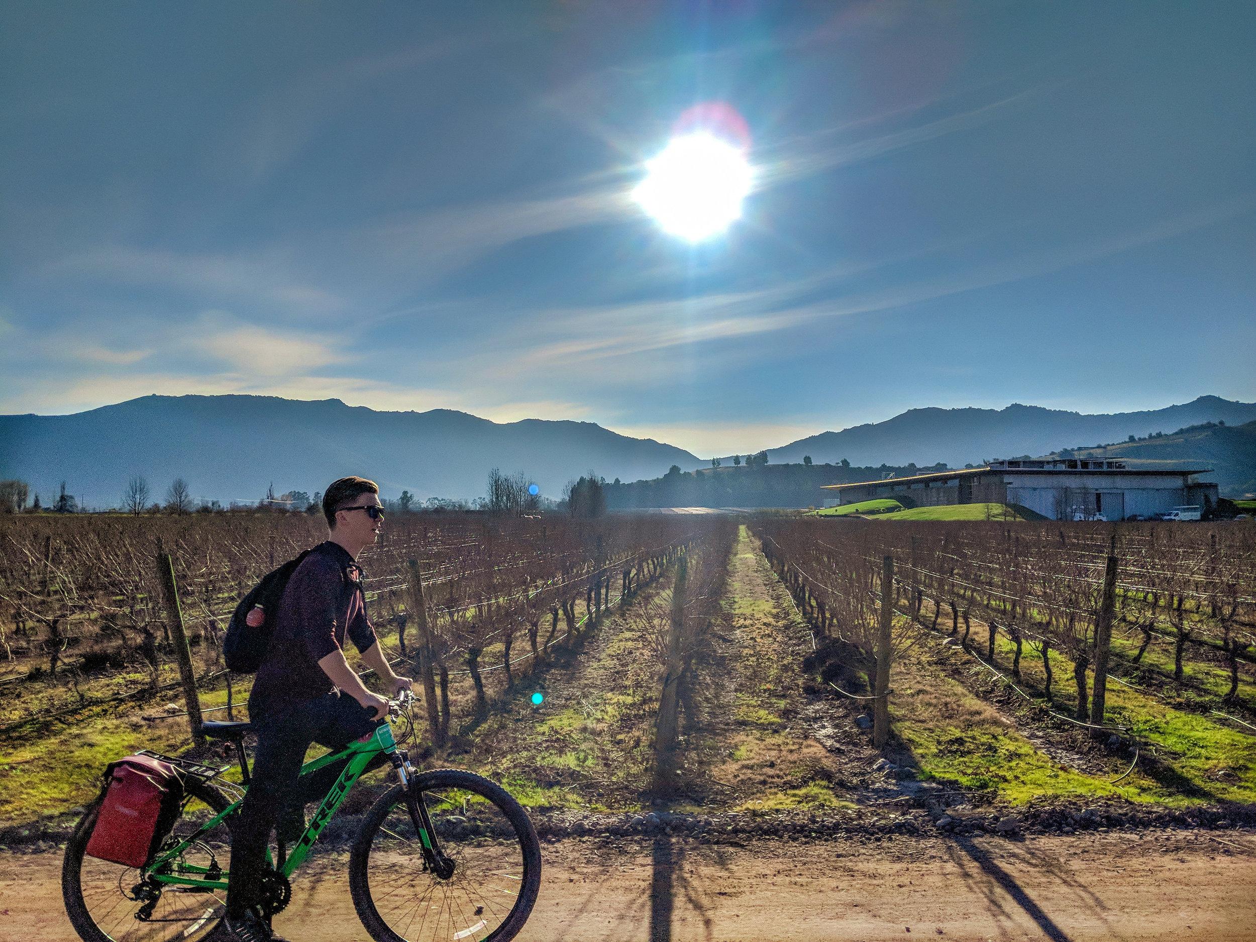 SantaCruz_Biking.jpg