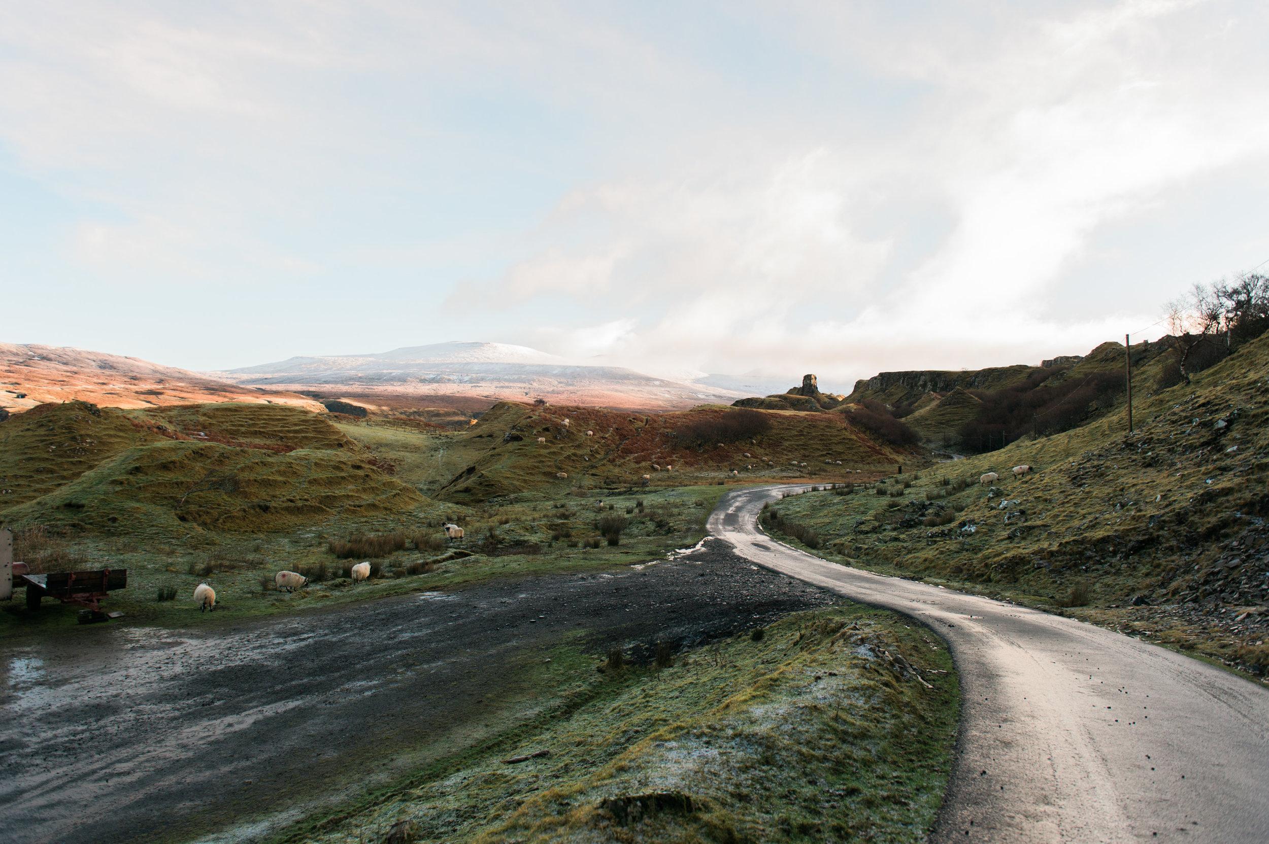 scotland-13.jpg