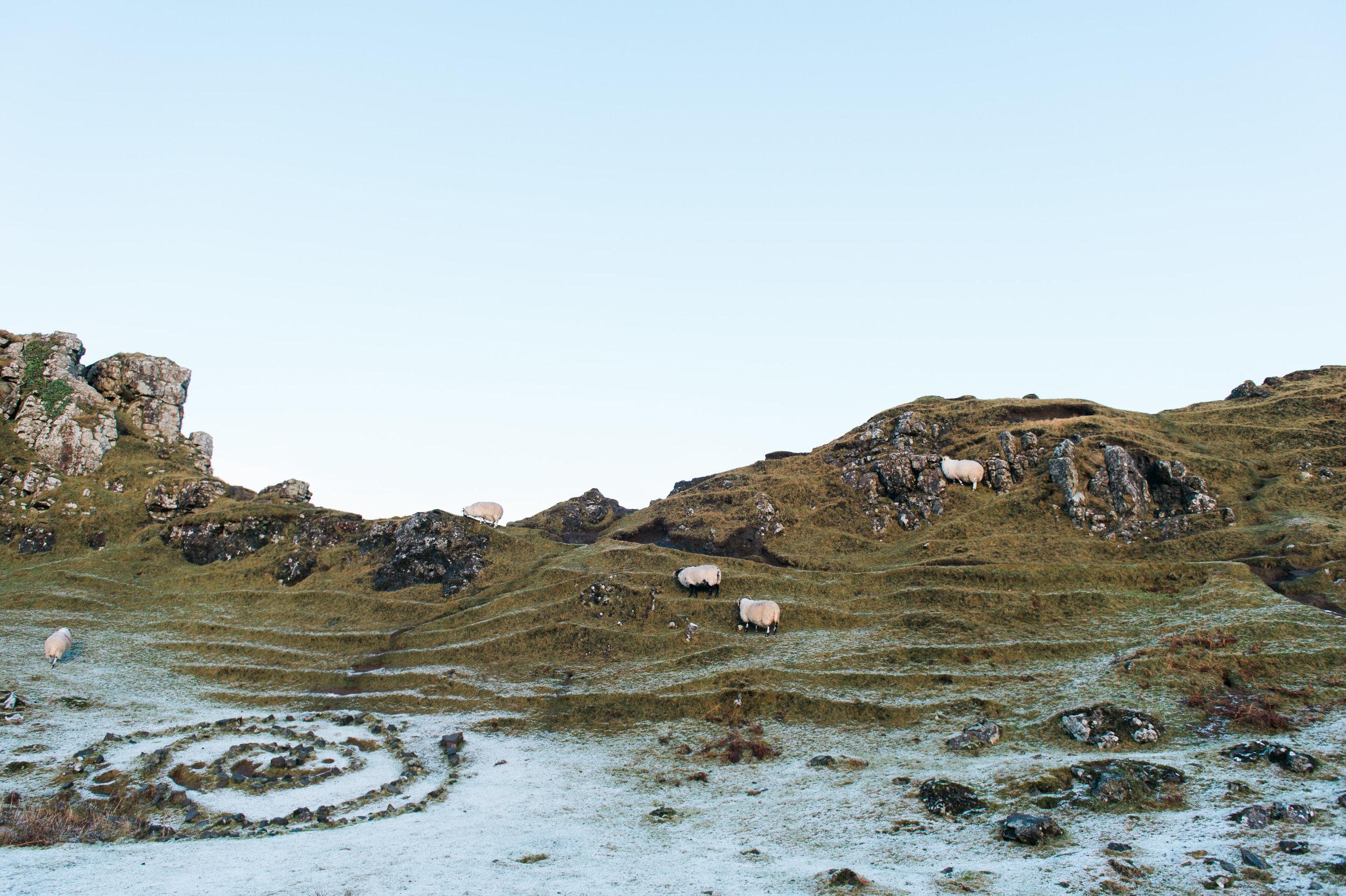 scotland-16.jpg