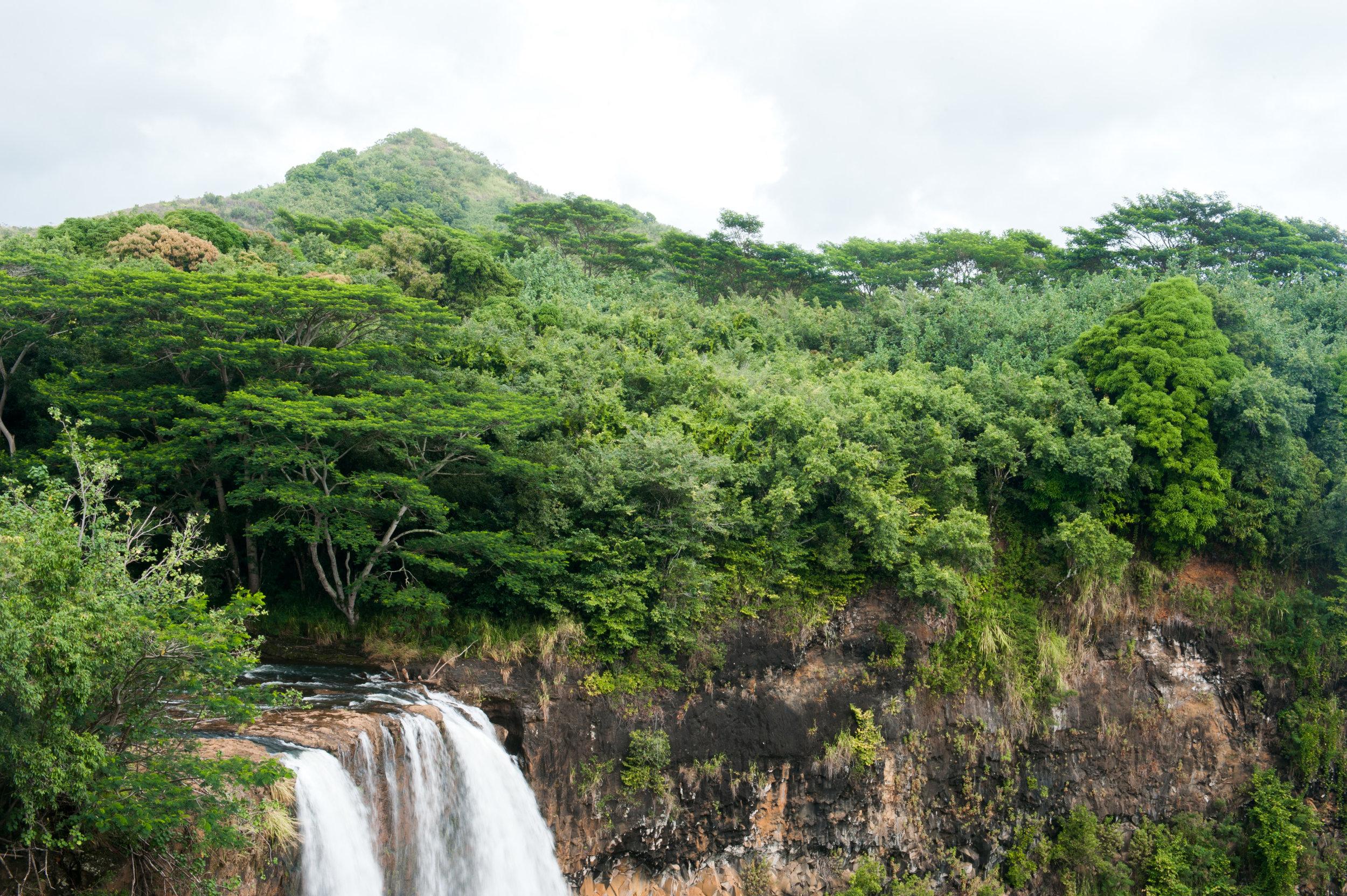 hawaii-29.jpg