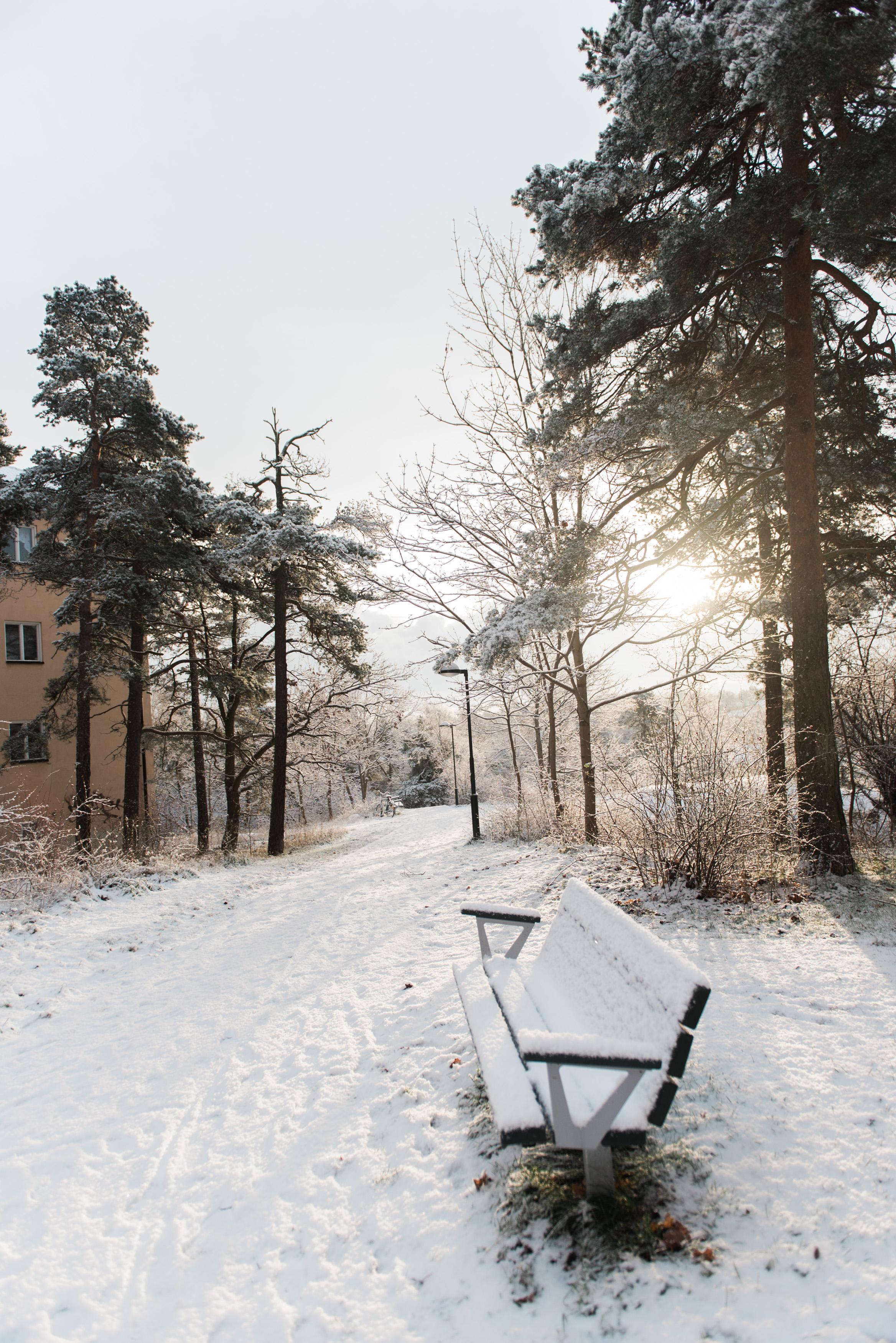 sweden-13.jpg