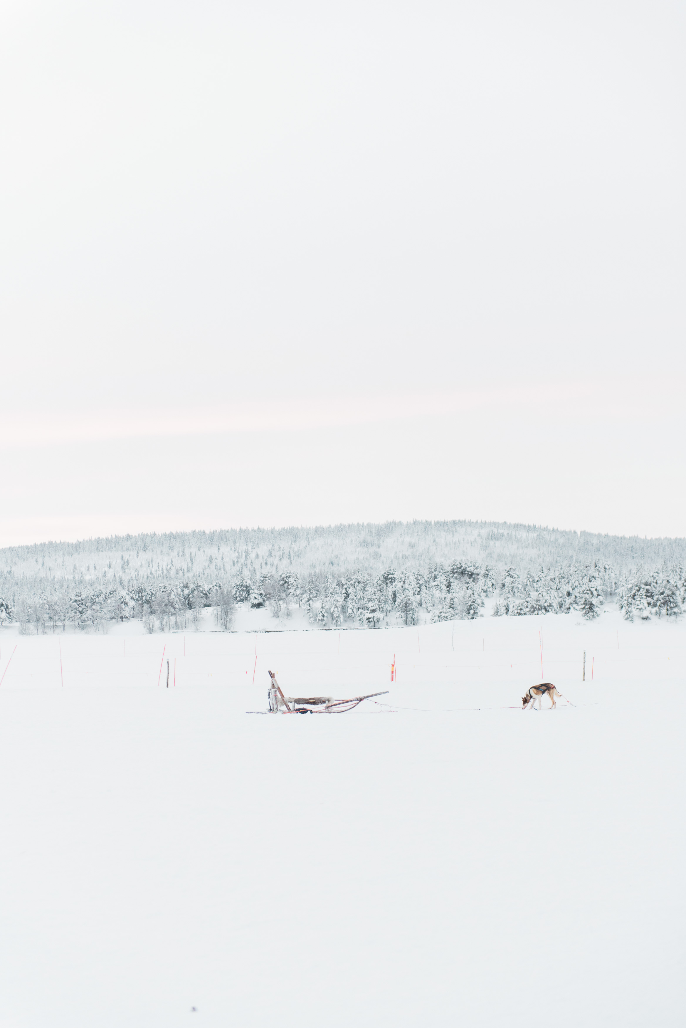 sweden-73.jpg