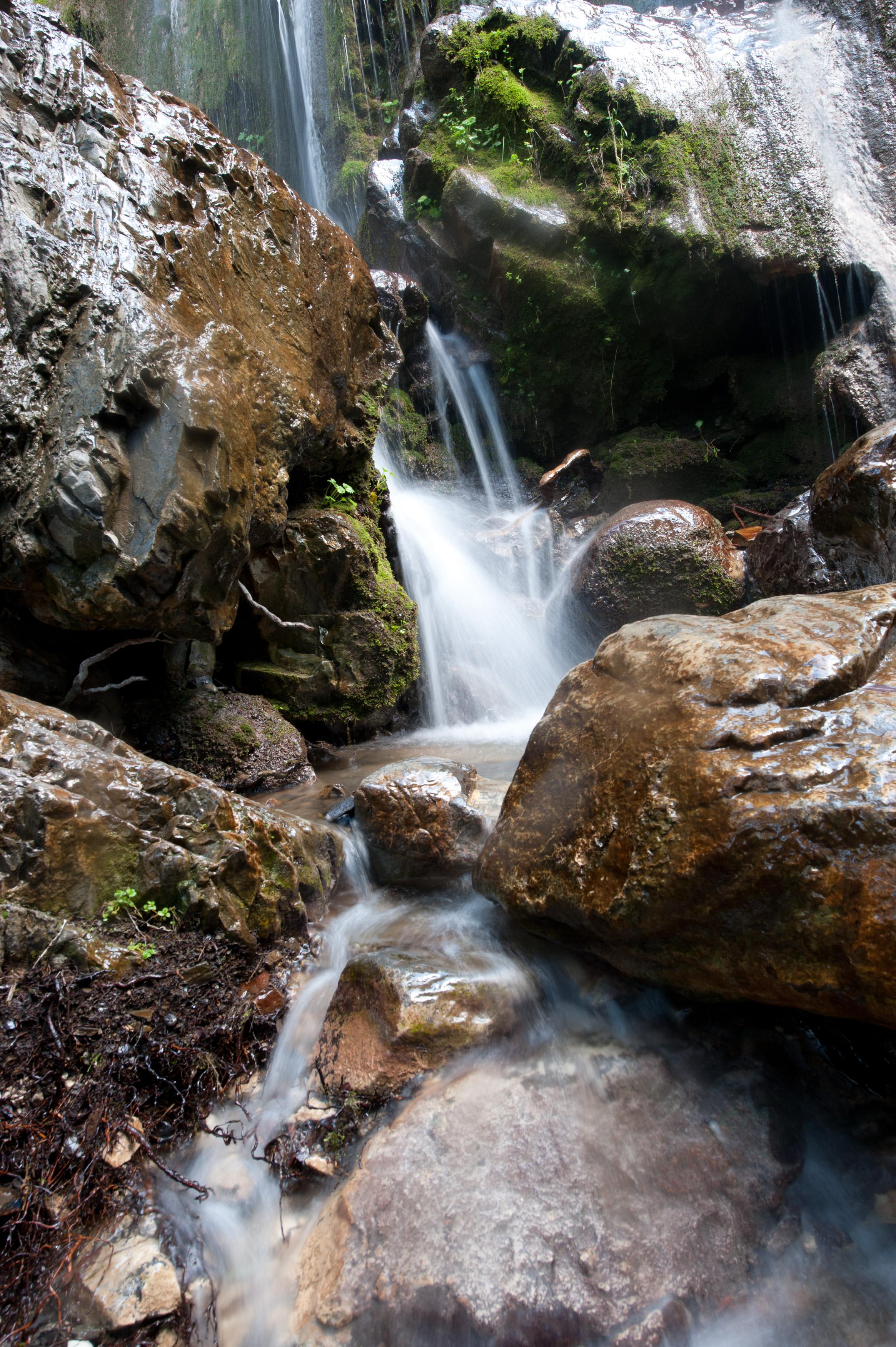 nature-26.jpg