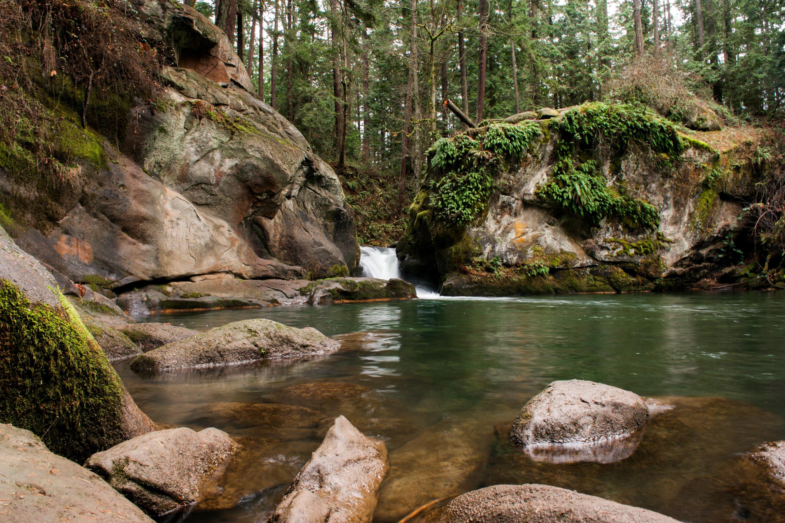 nature-38.jpg