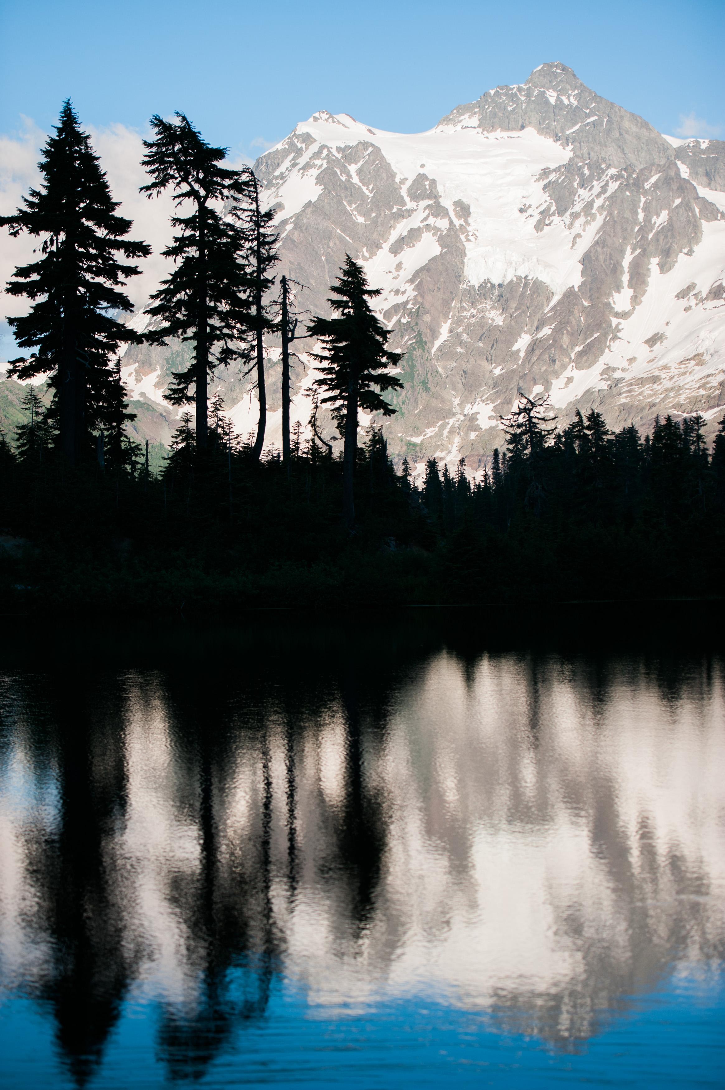nature-45.jpg